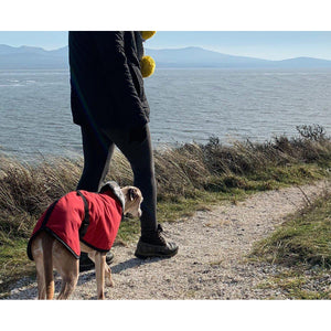 wind proof and water proof whippet coats uk