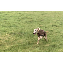 Load image into Gallery viewer, coats for whippets uk