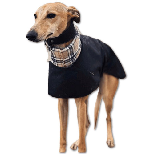 Customisable whippet coat with choice of fleece linings and harness hole. Saluki