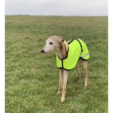 Load image into Gallery viewer, hi viz whippet coat jacket with hood and yellow high viz waterproof material