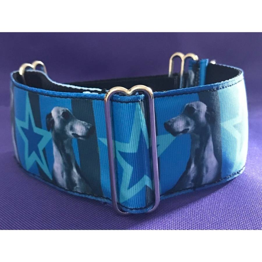 Martingale Collar - Sighthound Portrait - 2in Wide