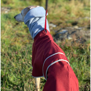 snood hood greyhound whippet coat with hole for lead. waterproof and windproof, ideal for winter