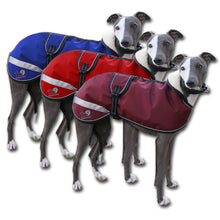 Load image into Gallery viewer, Kellings Dog Coats - starbright whippet coats uk made. The trendy whippet. sighthound coats