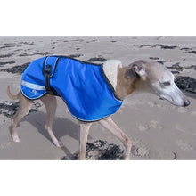 Load image into Gallery viewer, The Trendy Whippet coat - starbright royal blue waterproof rain coat for whippets and sighthounds