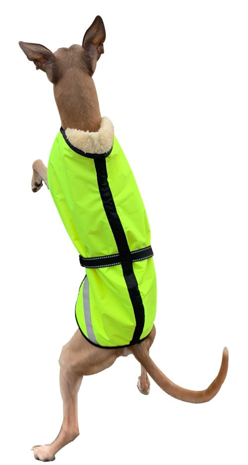 Whippet Jumping in his coat from the back - Product image