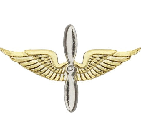 Aviation Brite Pin-on - Insignia Depot