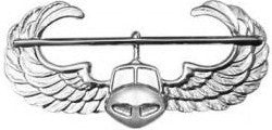Air Assault Brite Pin-on Badge - Insignia Depot