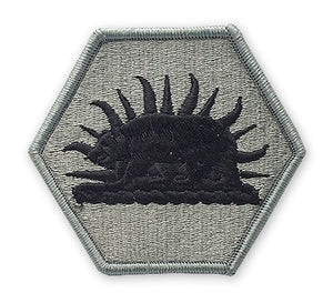 California Army National Guard ACU Patch with Hook Fastener - Insignia Depot
