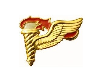 Pathfinder Mini Brite Pin On Badge - Insignia Depot