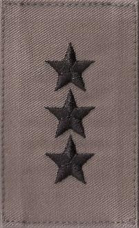 USAF O9 Lieutenant General ABU with Hook Fastener - Insignia Depot