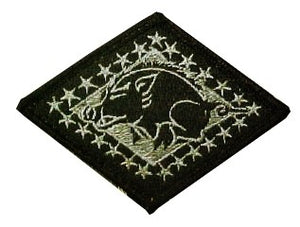 Arkansas National Guard OCP Patch with Hook Fastener (pair) - Insignia Depot