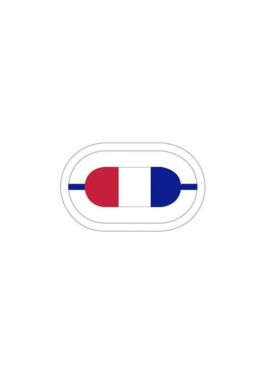 506th Infantry 1st Battalion Oval - Insignia Depot