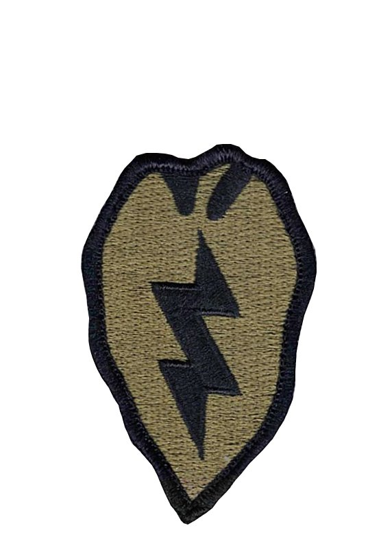 25th Infantry Division OCP Patch with Hook Fastener (pair) - Insignia Depot
