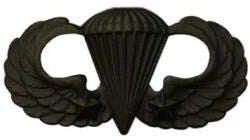 Combat Parachutists (Jump Wings) 2 Jumps Basic Black Metal Pin-on Badge - Insignia Depot