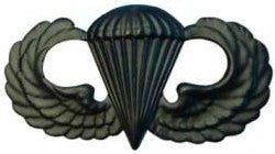 Parachutists (Jump Wings) Basic Black Metal Pin-on Badge - Insignia Depot