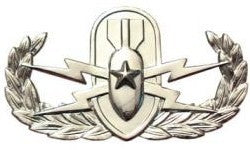 Explosive Ordnance Disposal Senior Brite Pin-on Badge - Insignia Depot