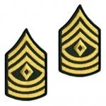 E8 First Sergeant Gold on Green Sew-on - Large-Male - Insignia Depot