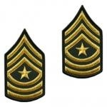 E9 Sergeant Major Gold on Green Sew-on - Large-Male - Insignia Depot