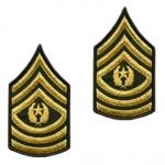 E9 Command Sergeant Major Gold on Green Sew-on - Small-Female - Insignia Depot