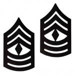 E8 First Sergeant Black Metal Pin-on Rank - Insignia Depot