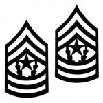 E9 Command Sergeant Major Black Metal Pin-on Rank - Insignia Depot
