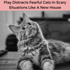 HealthyCat® toys help distract your pet from fearful situations that impact their daily comfort