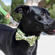 AVOCADO BOW TIE FOR DOGS