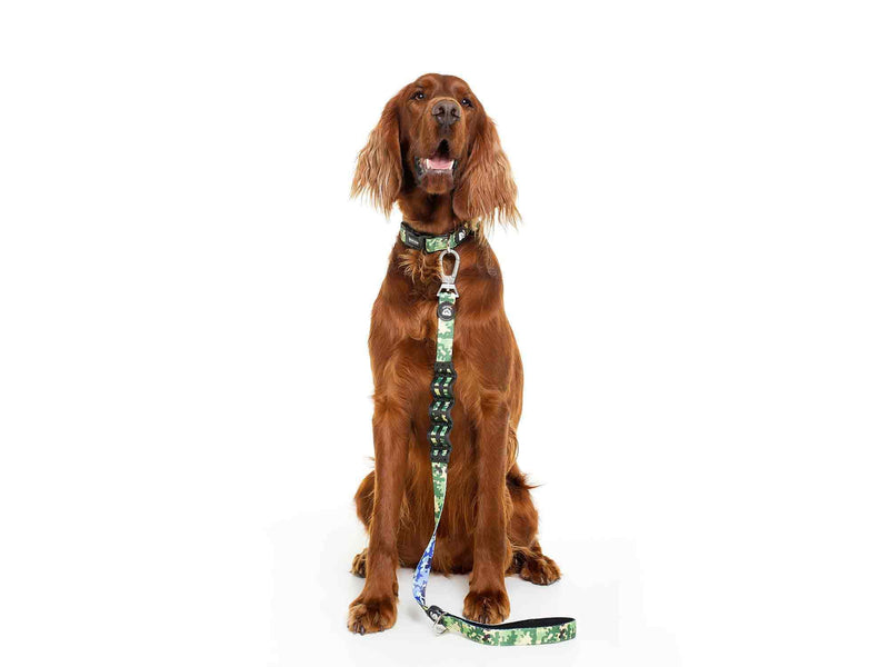 CAMO DOG COLLAR - Dukier Store