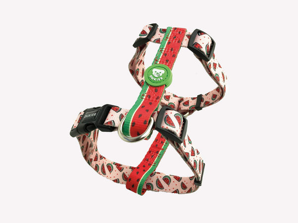 CLASSIC WATERMELON DOG HARNESS - Dukier Store