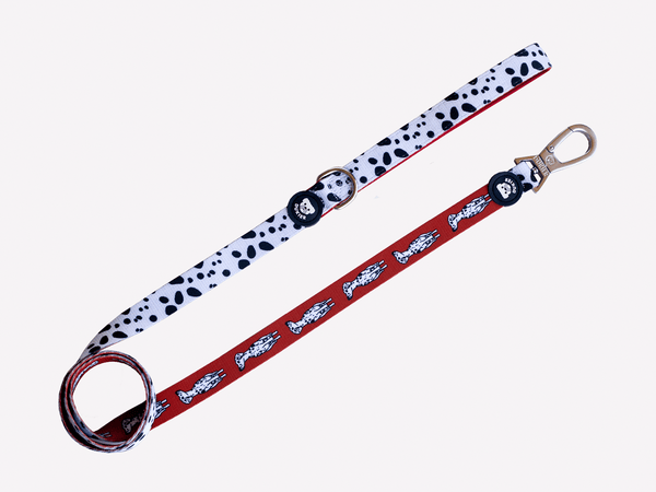 DALMATIAN LEAD FOR DOGS - Dukier International Store