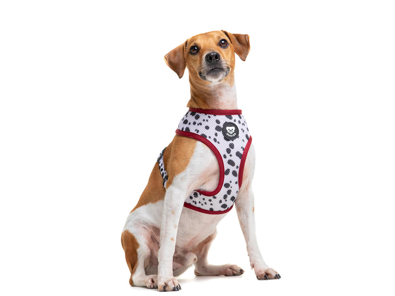 DALMATIAN REVERSIBLE DOG HARNESS - Dukier International Store