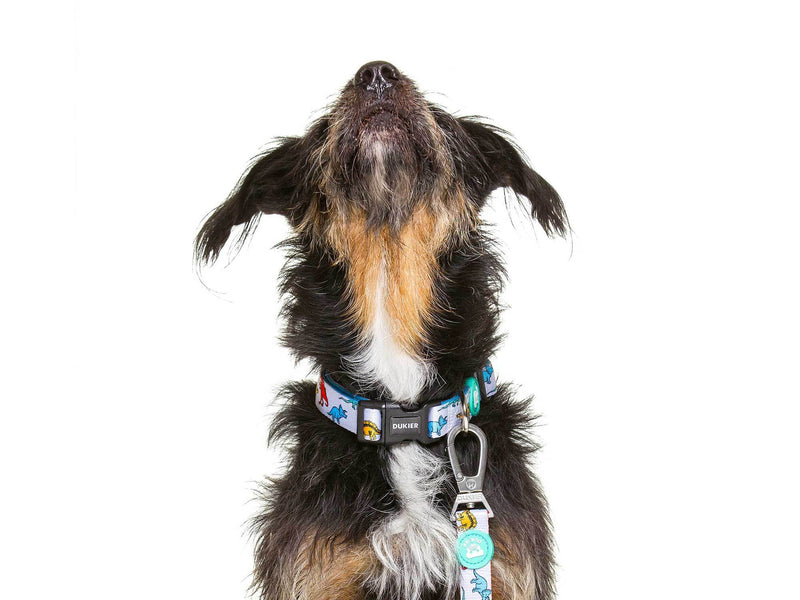 DINO COLLAR FOR DOGS - Dukier Store