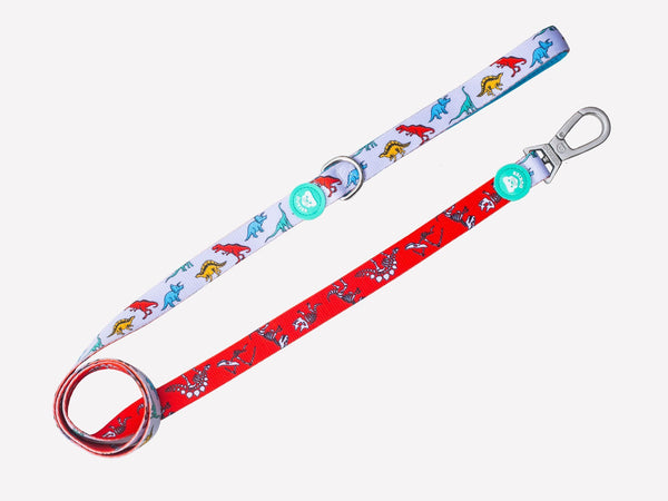 DINO LEASH FOR DOGS - Dukier Store