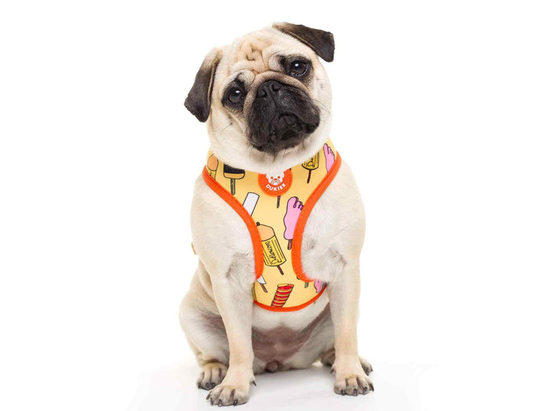 HELADOG REVERSIBLE DOG HARNESS - Dukier Store