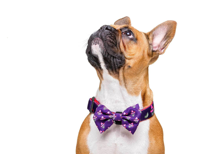 MÉXICO BOW TIE FOR DOGS - Dukier Store