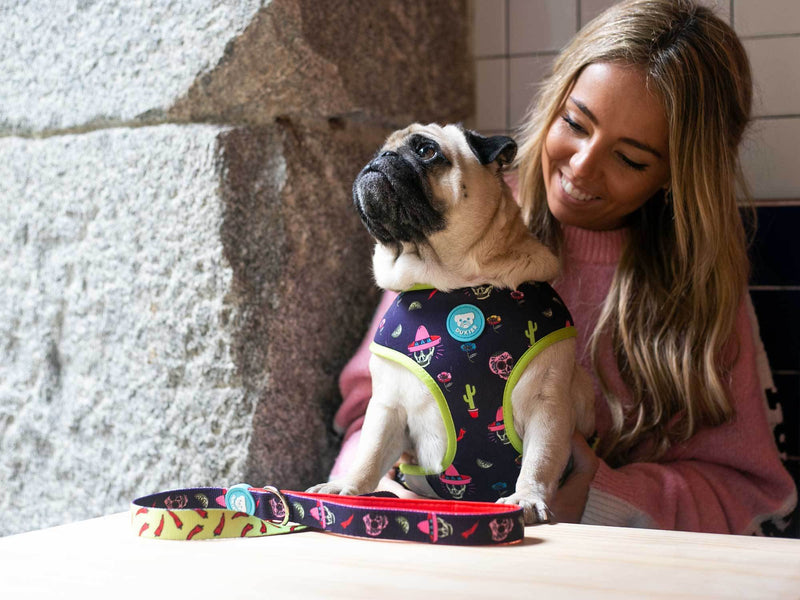 MÉXICO REVERSIBLE HARNESS FOR DOGS - Dukier Store