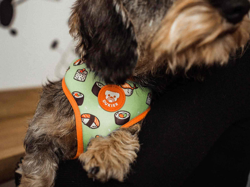 NIGIRI REVERSIBLE DOG HARNESS - Dukier Store