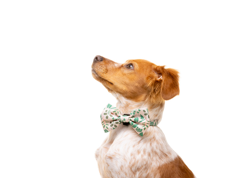 PLANTS BOW TIE FOR DOGS