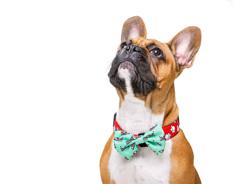 POPCORN BOW TIE FOR DOGS - Dukier Store