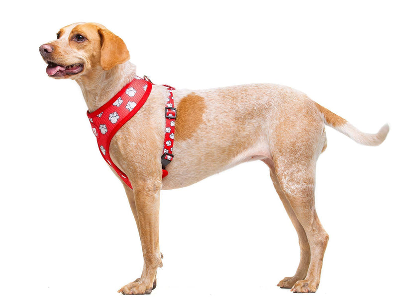 POPCORN REVERSIBLE DOG HARNESS - Dukier Store