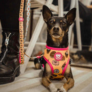 REVERSIBLE CUPCAKES HARNESS FOR DOGS - Dukier Store