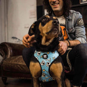 Reversible dog skull harness - Dukier Store