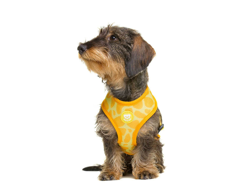 REVERSIBLE TAPAS DOG HARNESS - Dukier Store