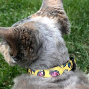 SARDINE COLLAR FOR CAT - Dukier Store