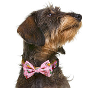 TAPAS BOW TIE FOR DOGS - Dukier Store