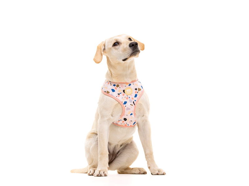 TERRAZO REVERSIBLE DOG HARNESS