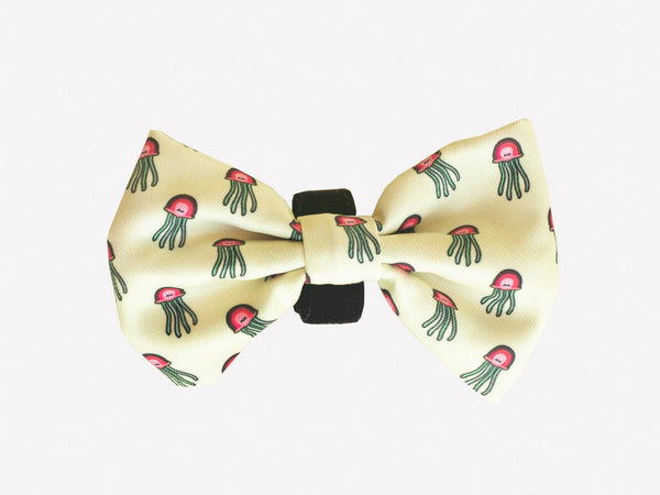 TURTLE BOW TIE FOR DOGS - Dukier International Store
