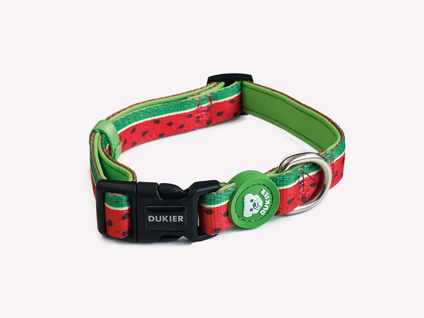 WATERMELON DOG COLLAR - Dukier Store