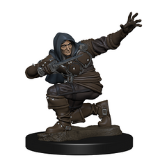 Premium Pathfinder Figures Wave 1 | HFX Games