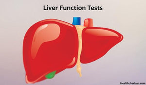 Liver/ Hepatic Function Test